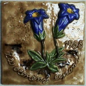 kachel 1988